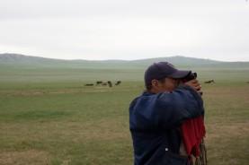 Dorion spotting eagles.